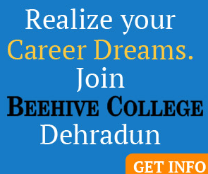 beehieve_college-dehradun