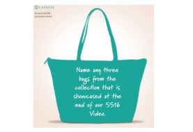 Hand Bag Freebies! Enter to Win Caprese Products