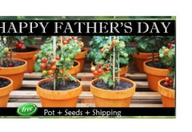 Order Free Plants And Seeds Giveaway 2016 Samples